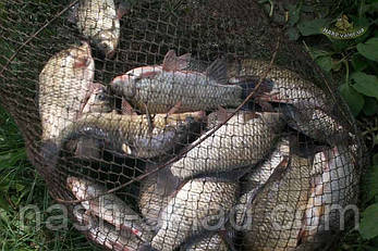 Садок рыболовный металлический, идеально подойдет для большого улова, фото 2