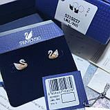 Серебряные серьги Swarovski Iconic Swan 5215037, фото 8