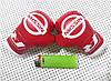 """Подвеска боксерские перчатки """"Skoda"""" Сувенирный подарок для мужчины, фото 8"""