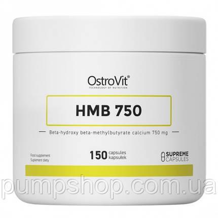 Бета-гидрокси-бета-метилбутират (ГМБ)  Ostrovit HMB 750 - 150 капс., фото 2