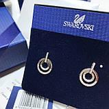 Серебряные cерьги Swarovski Circle 5349203, фото 3