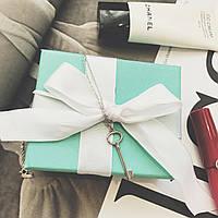 Серебряный кулон Key Pendant Tiffany & Co, фото 1