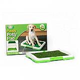 Туалет для собак Puppy Potty Pad 47х34х6 лоток для щенков горшок трава, Товары для животных, фото 8