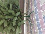 """Елка  искусственная литая """"Буковская"""", пышная густая, 210 см, с подставкой, в коробке, зеленая, фото 8"""