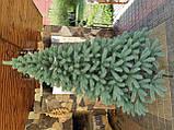 """Елка  искусственная литая """"Буковская"""", пышная густая, 230 см, с подставкой, в коробке, зеленая, фото 8"""