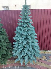 """Елка  искусственная литая """"Буковская"""", пышная густая, 230 см, с подставкой, в коробке, голубая"""