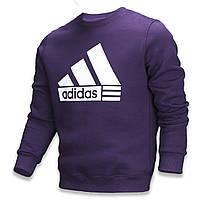 Свитшот осень-зима мужской фиолетовый ADIDAS PUR XS(Р) 20-412-003