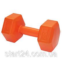 Гантели SportVida 2 x 3 кг SV-HK0219, фото 3