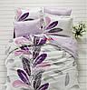 Постельное белье Mariposa Plume V1 сатин де люкс евро
