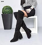 Деми и Зима! Стильные женские сапоги на каблуке ботфорты, фото 2