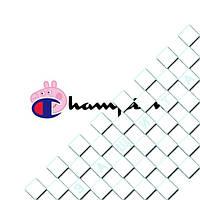 Термонаклейка Логотип [Свой размер и материалы в ассортименте]