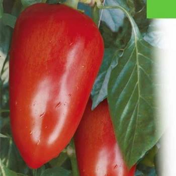 Алексий (Белозерка) семена перца, 2 г — перец сладкий, конический (Элитный ряд), фото 2