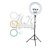 Кольцевая лампа для макияжа на штативе, большая (54см)