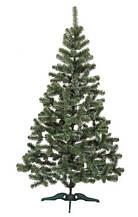 Елка новогодняя (Ялинка новорічна) Казка зелена з білими кінчиками