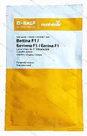 Семена огурца Беттина BETTINA  F1 500 с(Бетина), фото 1