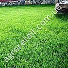 Трава газонная Универсальный 5 кг, фото 3