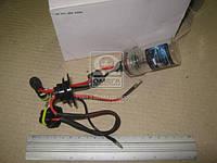Ксенон лампа H11 4300K. лампа 4300K
