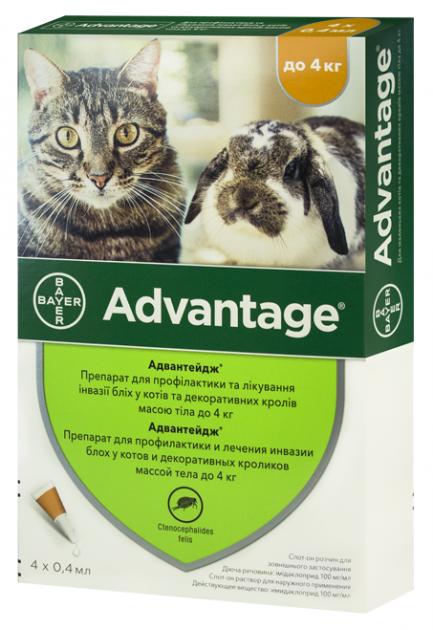 АДВАНТЕЙДЖ ADVANTAGE капли от блох для кошек и декоративных кроликов весом до 4 кг,, 4 пипетки