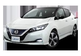 Килимки в салон для Nissan (Ніссан) Leaf 2 2018+