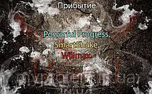 Поступление: Powerful Progress, SmartShake, Willmax.