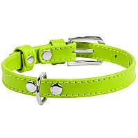 Ошейник кожаный Collar WauDog 3201 XS 19-25см лайм