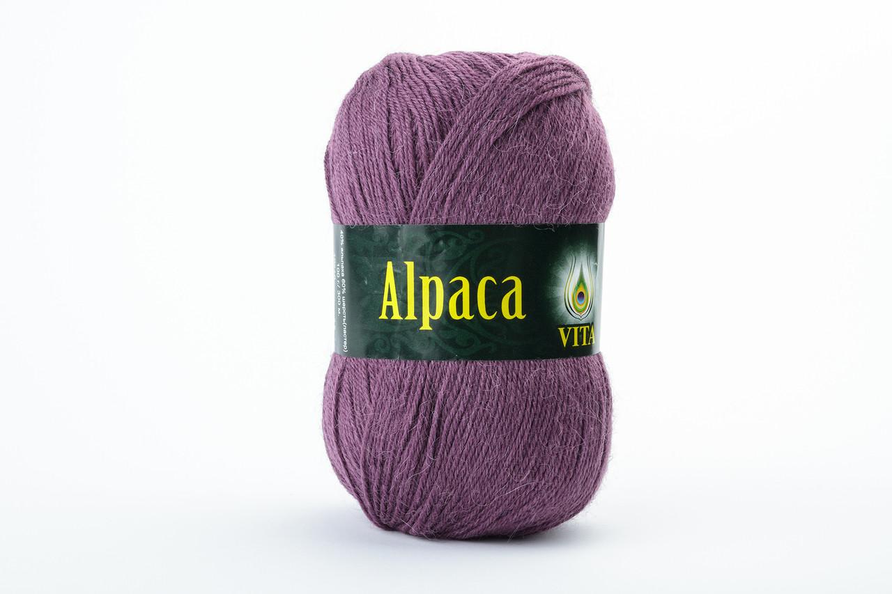 Пряжа Vita Alpaca wool 2969 сливовый