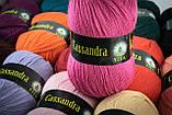 Пряжа Vita Cassandra 3608 василек, фото 3