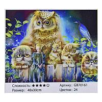 Алмазная мозаика JIA TU TOY GB 70161 40 х 30 см
