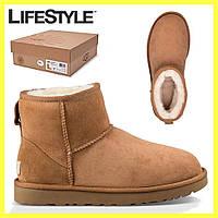 Угги женские UGG Australia, Женская зимняя обувь + Подарок