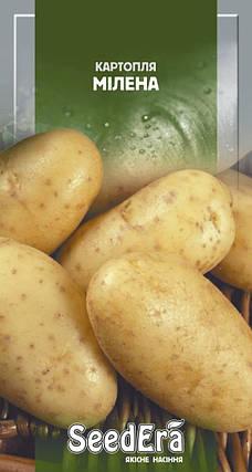 Семена картофеля Милена 0,02г ТМ SeedEra, фото 2