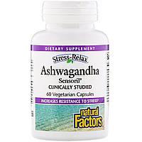 Формула от стресса, Ashwagandha, Natural Factors, 60 капсул