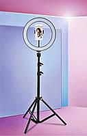 Профессиональная кольцевая светодиодная лампа LED RING D 36 см 36W на штативе для блогера / селфи / фотографа, фото 1