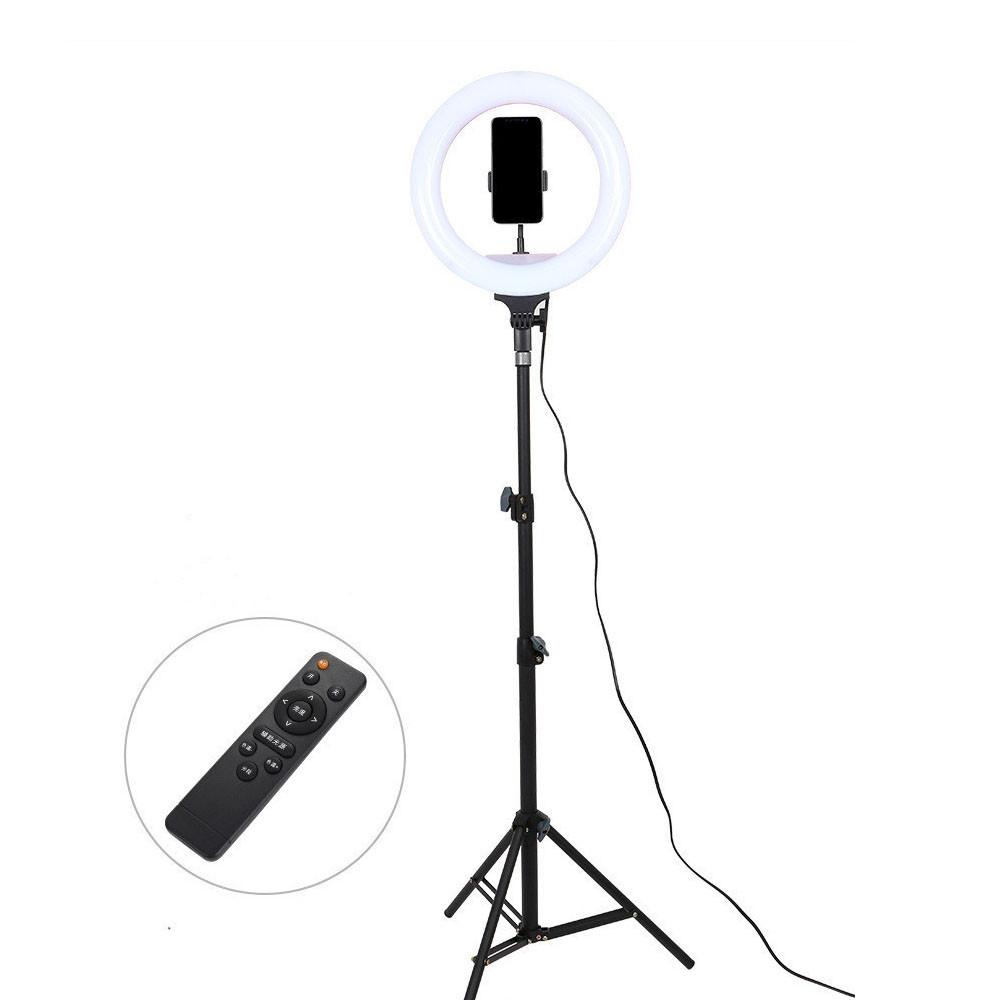 Профессиональная светодиодная кольцевая лампа AL33 33см 24Вт на 168 светодиодов с пультом ДУ и со штативом