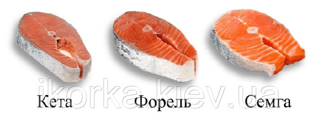 стейк сьомги шматочки лосося різновиди лосося