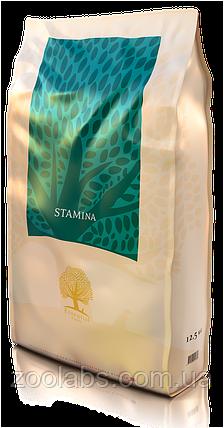 Корм Essential Foods для активных собак мелких пород | Essential Foods Dog Stamina Small Breed 3 кг, фото 2