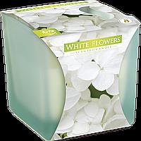"""Ароматическая свеча в матовом стекле snk80m-179 BISPOL """"Белые цветы"""""""