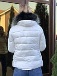 Зимняя белая куртка с капюшоном с мехом, фото 2