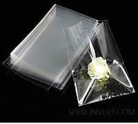 Пакет прозрачный полипропиленовый 30*40 ( 100 штук )