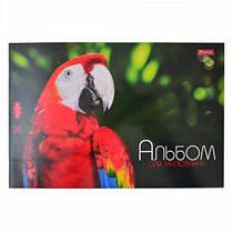 Альбом для рисования 12 листов 1 вересня Попугай, Зелёный (4823092240163)