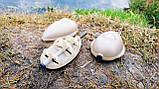 "Рыболовная кормушка , карповый монтаж ""Flat Feeder"" на ледкоре с пресс-формой , вес 30 грамм, фото 4"