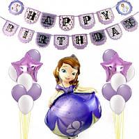 Набор для декора Дня рождения в стиле принцессы Софии