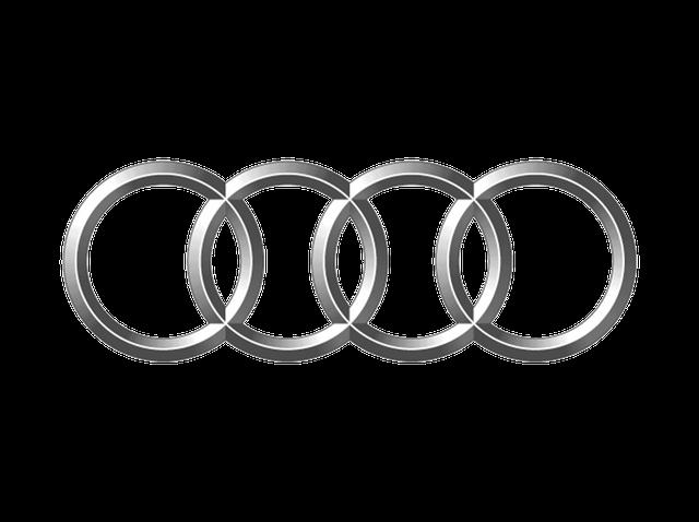 Підкрилки для Audi (Ауді)