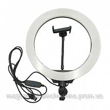 Кольцевая LED лампа LC666 (1 крепл.тел.) (метал.шарниры) USB (26см), фото 3