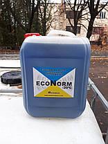 Антифриз для систем отопления Econorm -20C, кан 10л., фото 2