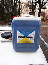 Антифриз для систем отопления Econorm -20C, кан 10л., фото 3
