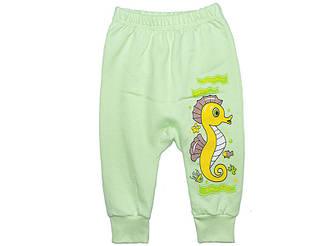 Ясельные штанишки с начесом в расцветках для мальчика или девочки