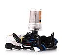 Комплект ксенонового света Infolight Standart H7 6000K +50% (P111005), фото 4