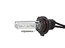Комплект ксенонового світла Infolight Standart HB4 5000K +50% (P111016), фото 2