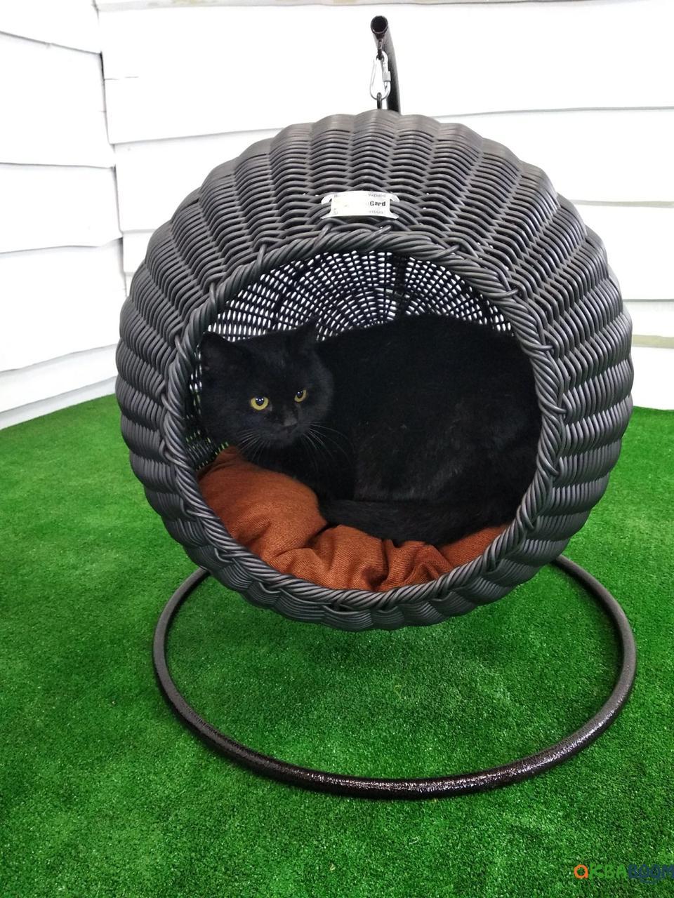 Подвесной домик кокон для котов, кошек, Садовая мебель из искусственного ротанга