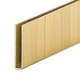 Скоба для степлера 30мм 6*1.00*1.20мм 2500шт/упак. INTERTOOL PT-8430, фото 3